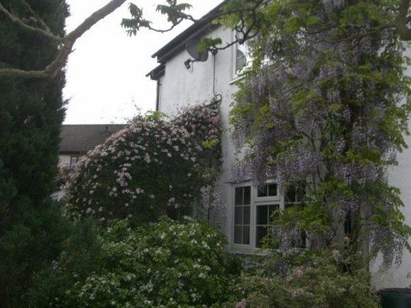 Blaen Cwm Bed and Breakfast